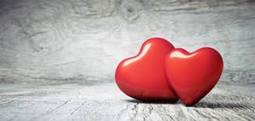 Valentine's Day Menus